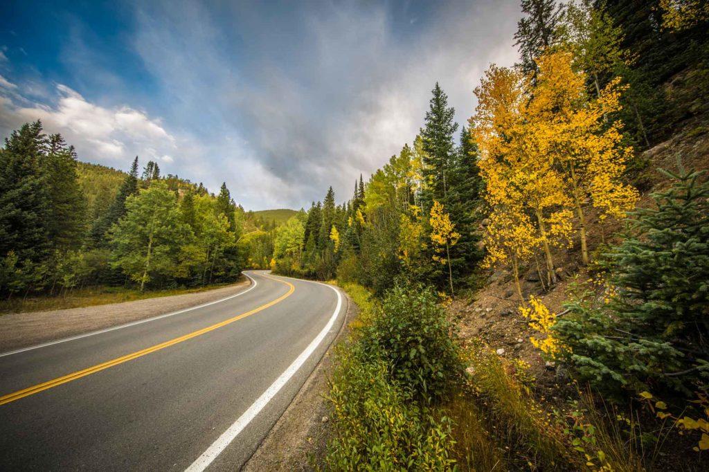 Fall In Colorado - Beautiful Aspen Trees Turning Gold in Autumn