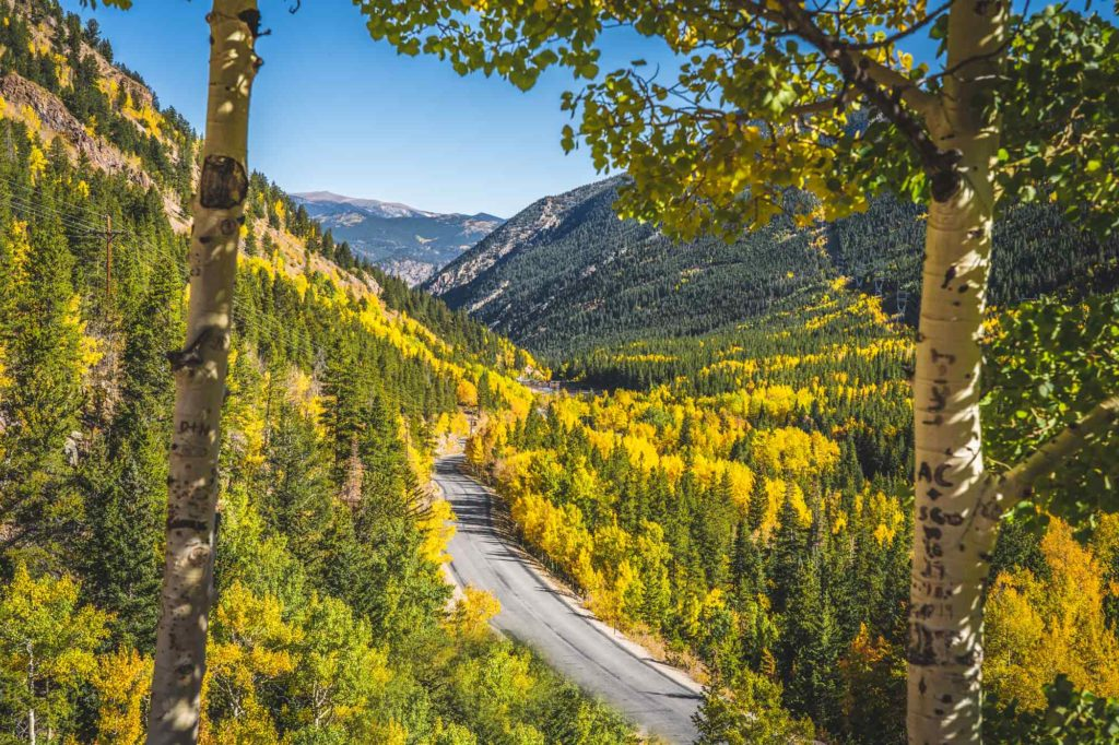 Scenic Drives Near Denver - Guanella Pass View during the fall - leaf peeping!