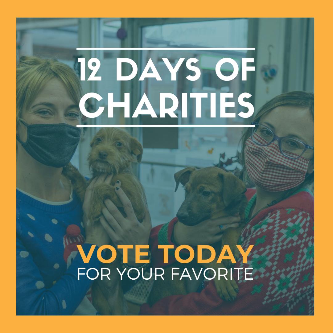12 days of charities